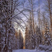 Зима :: Андрей Иванов