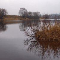 Реки грустящее безлюдье... :: Лесо-Вед (Баранов)