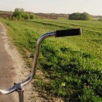 Велосипед :: Алина Цыбанова