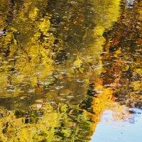 Плывущий в золотом отражении... :: Sergey Gordoff