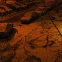 Ночная жизнь двора :: Андрей Лукьянов