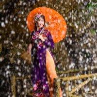 Вьетнамская фея водопада :: Илья Шипилов