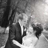 Свадьбы :: Света Кошкарова