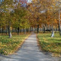 Осенними тропами :: Сергей Тарабара