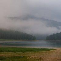 Утренний туман :: Олег