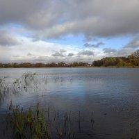 Чистый пруд и побережье в ноябре :: Маргарита Батырева