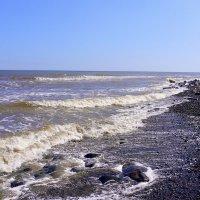 Берег моря :: Вера Щукина