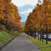 Осень пришла. :: евген03 Левкович