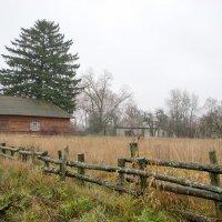 Сельский пейзаж в пасмурную погоду :: Сергей Тарабара