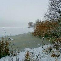Зима. :: Чария Зоя