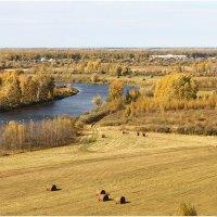 Окрестность деревни Малая Ченчерь :: Александр Максимов