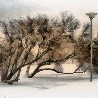 Зима в Пирите :: Татьяна Смирнова