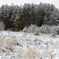И ещё один наряд зимы :: Николай Масляев