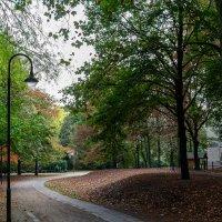 Дорожка в парке, Дюссельдорф :: Witalij Loewin