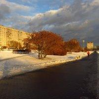 Не весна! :: Андрей Лукьянов