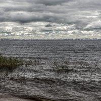 Залив в Лахте :: Valerii Ivanov