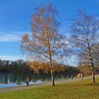 Обернулась осень на прощанье, Подарив улыбку, как весна... :: Galina Dzubina