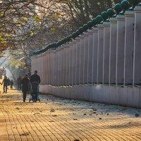 Прогулка в осеннем парке. :: Алекандр Зиновьев