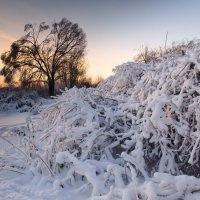 зимний пейзаж :: scbi
