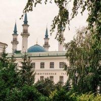 В Казанском кремле.. :: Андрей Головкин