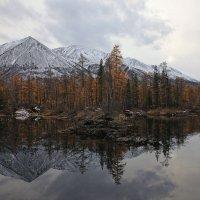 Пасмурный пейзаж :: Владимир Собардахов