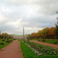 Москва.Кусково.осень 2016. :: megaden774