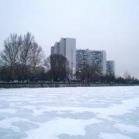Прогулка по Москва-реке... :: Николай Дони