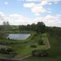 Вид из окна на парк :: Елена Павлова (Смолова)