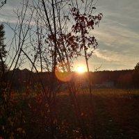 сентябрь :: Довлет Мередов