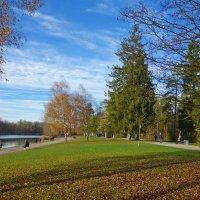 """""""Ноябрь так тих, благороден, красив..."""" :: Galina Dzubina"""