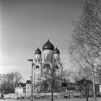 Храм :: Яков Реймер