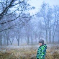 Ежик в тумане) :: Ксения Базарова