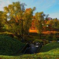 Петергоф. Английский парк осенью. :: Владимир Ильич Батарин