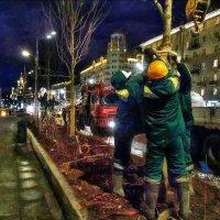 Нам пророчат суровую зиму? :: Ирина Данилова