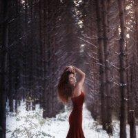 Фото-арт :: Василиска Переходова