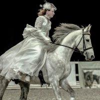 Мечты и реальность о белом коне! :: Cветлана Журкина