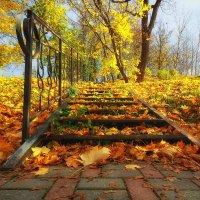 Лестница в осень :: Вячеслав Борисенко