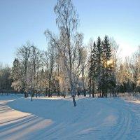 Зимний день :: Олег Попков