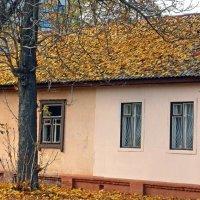 Утепление крыши естественным способом :: Сергей Тарабара
