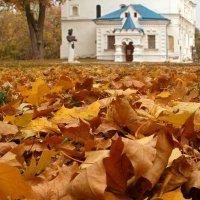 Осенний мотив :: Сергей Тарабара
