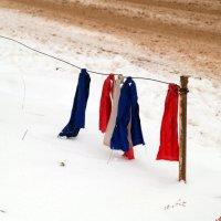 И какая же скотина флаг порвала в лоскуты?:) :: Андрей Заломленков