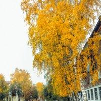 Осенняя улица 2 :: Вячеслав Баширов