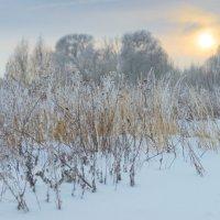 Зима :: Мария Кривошеина
