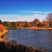 Осень-2 :: Gene Brumer