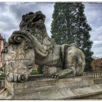 Львы в замке Ксенз :: Николай Милоградский