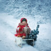 Первый день зимы!) :: Violafoto5