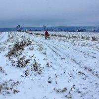 По первому снегу :: Валерий Талашов