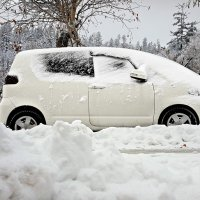 Снегопад :: Tatiana Belyatskaya