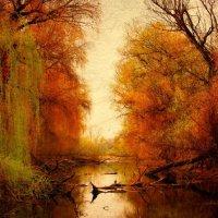 ...осень... :: светлана