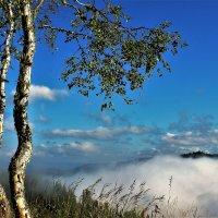 Туман надвигается :: Сергей Чиняев